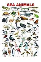 動物のチャート Animals Chart Painting silk fabric poster シルクファブリックポスター 120cm x 80cm
