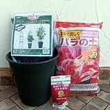 バラ用 ミニオベリスク B-120型と鉢と土と肥料のセット[つるバラの栽培に! ][25%引!]