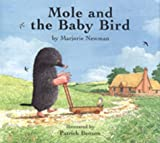 Mole And The Baby Bird 画像