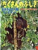 月刊 たくさんのふしぎ 2012年 01月号 [雑誌]