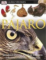 Pajaro (DK Eyewitness Books)