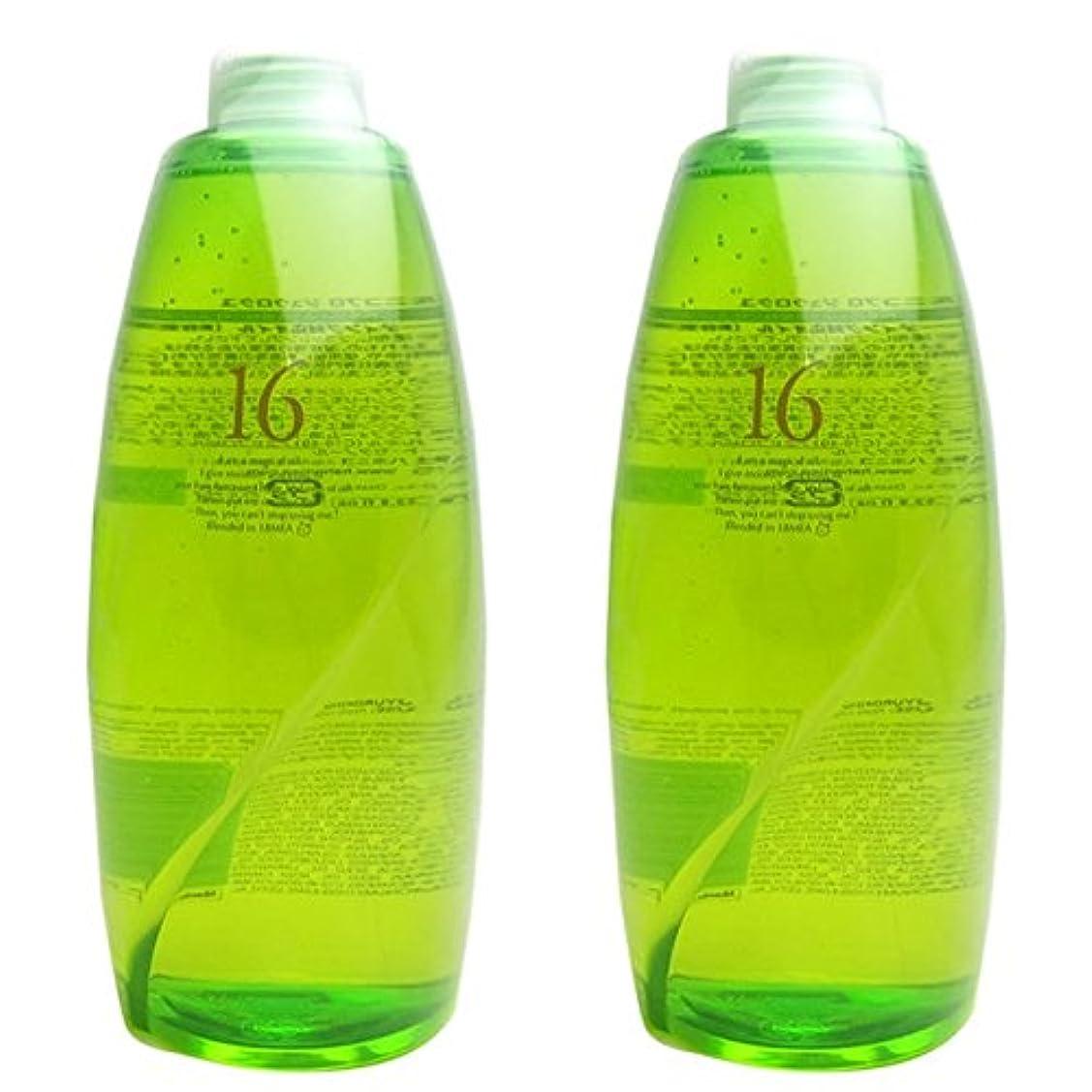 療法危険な耐えられない【X2個セット】 ハホニコ 十六油 (洗い流さないトリートメント) 1000ml 詰替え用 hahonico