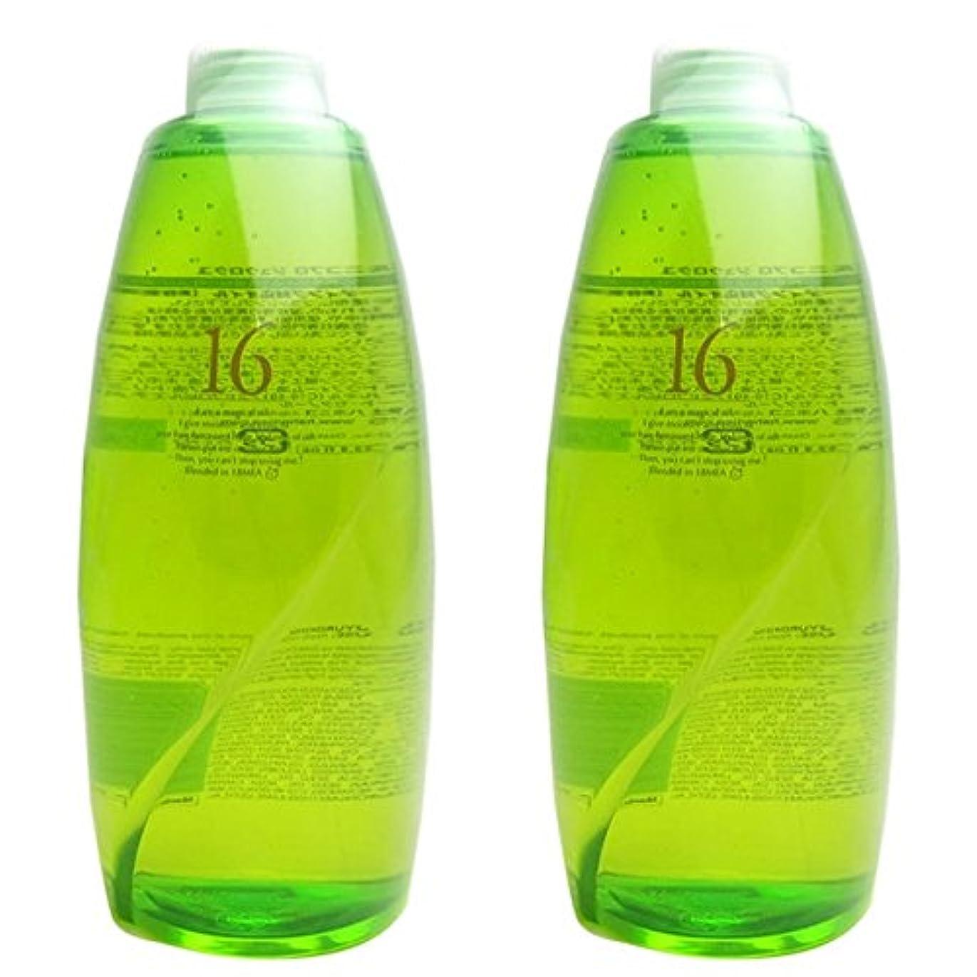ステンレス待つ新鮮な【X2個セット】 ハホニコ 十六油 (洗い流さないトリートメント) 1000ml 詰替え用 hahonico