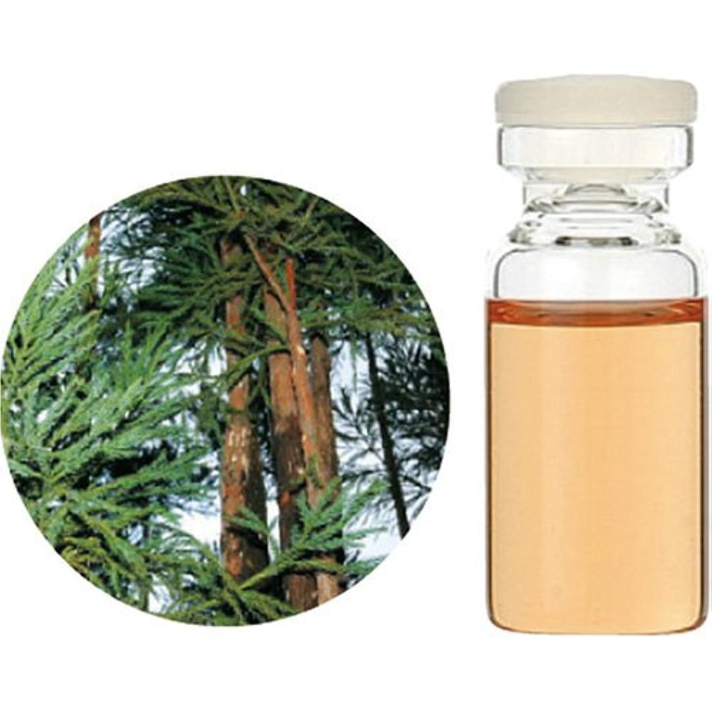 素晴らしい良い多くの思想思われる生活の木 C 和精油 杉 (木部) エッセンシャルオイル 10ml