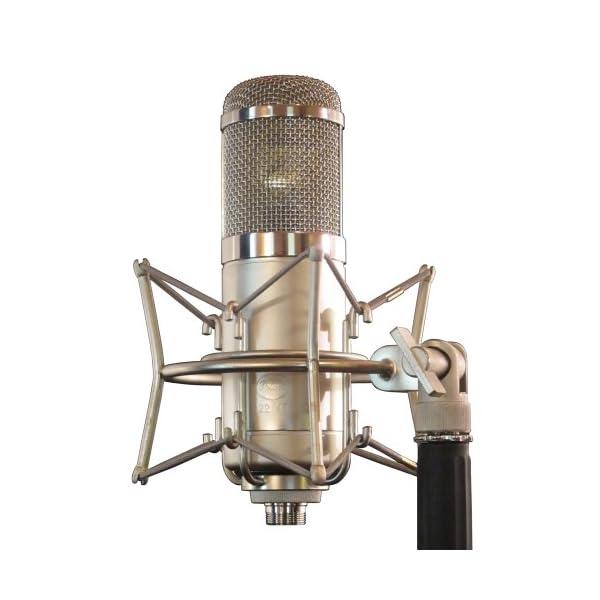 Peluso Microphone Lab ラ...の紹介画像2