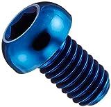 カラーチタン ボタン六角穴ボルト ブルー M6×L10 P1.0 【4本セット】 619BBC61010BL-4