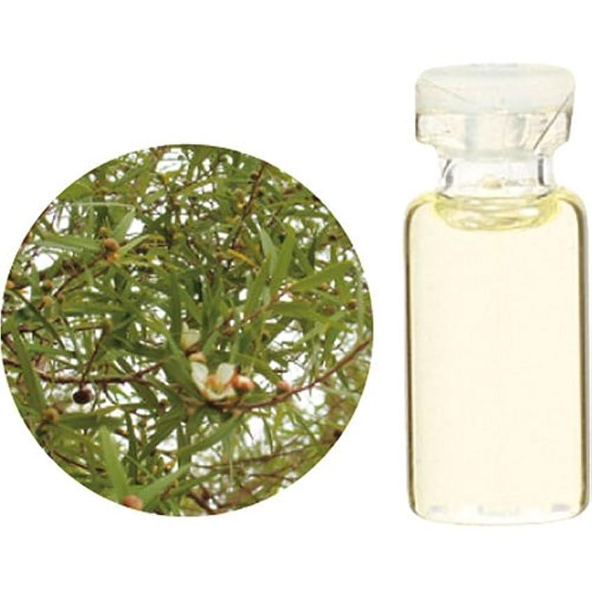 落ち着くまどろみのある縁Herbal Life レモンティートゥリー 10ml