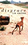 Disgrace (Thorndike Large Print General Series)
