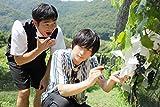ARAMAKINGDOM ~あらまき王子のお助け戦記~ 第2章[DVD]