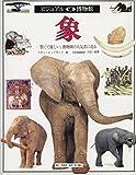 象 (ビジュアル博物館)