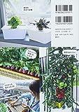 はじめてのボックス水耕栽培 まいにち、無農薬野菜を収穫! 画像