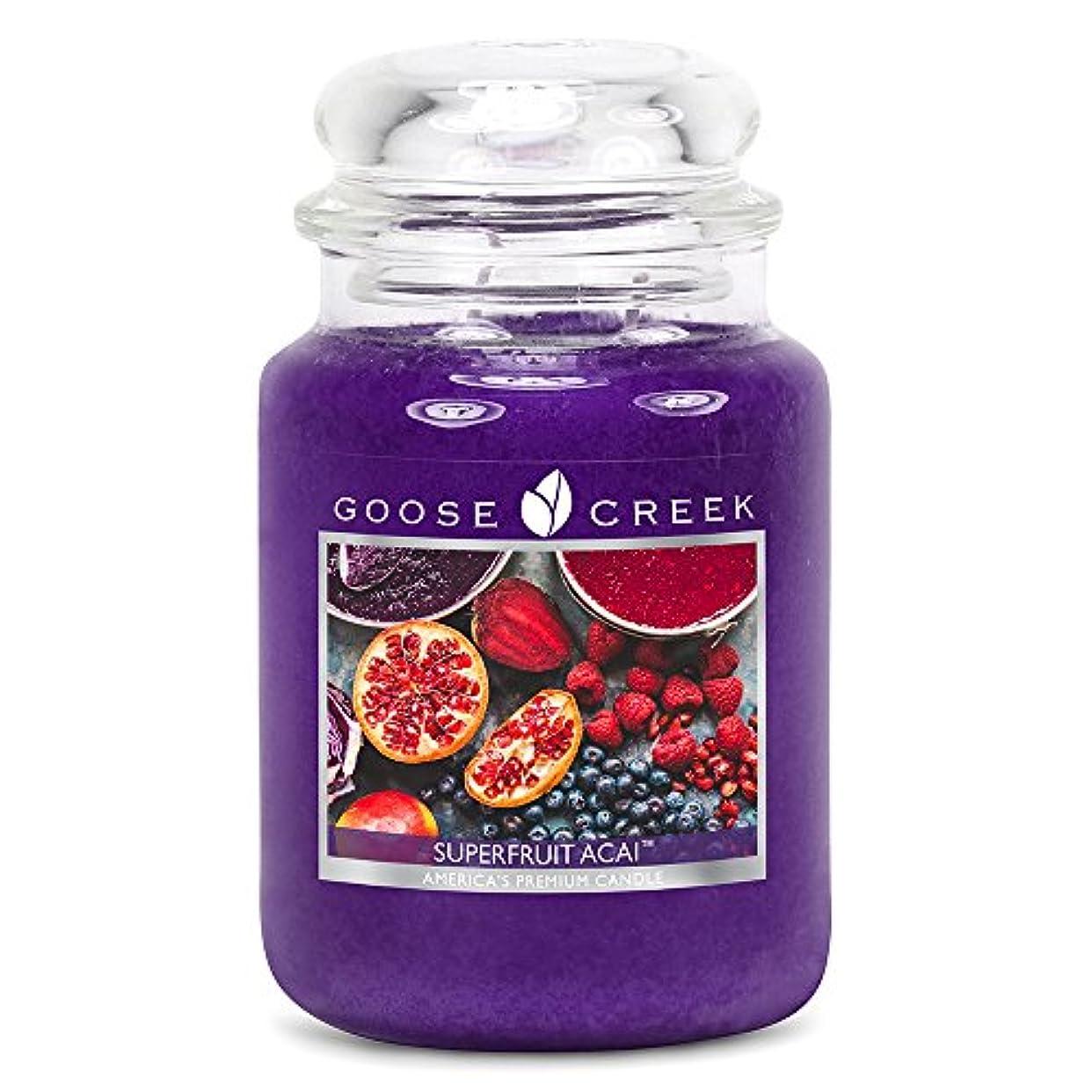 アーク性格センチメンタルGoose Creek ES24570 24 oz Essential Superfruit Acai Jar Candle