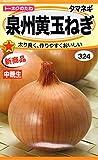 【種子】 タマネギ 泉州黄玉ねぎ トーホクのタネ