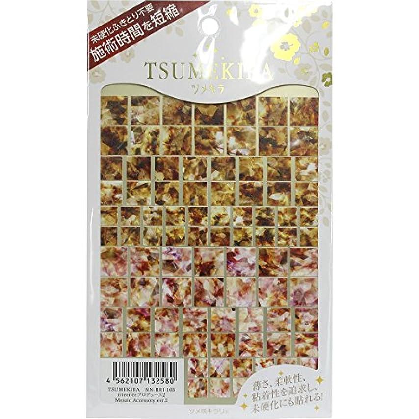 余剰植物学者ペンフレンドTSUMEKIRA ネイルシール Mosaic Accessory ver.2 NN-RRI-103