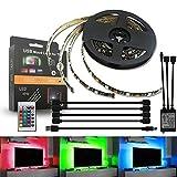Ralbay TV テレビライト ストリップライト イルミネーション RGB カラフル 防水防滴高輝度 SMD5050 LEDテープライト4本セット一年保証 (4本セット)