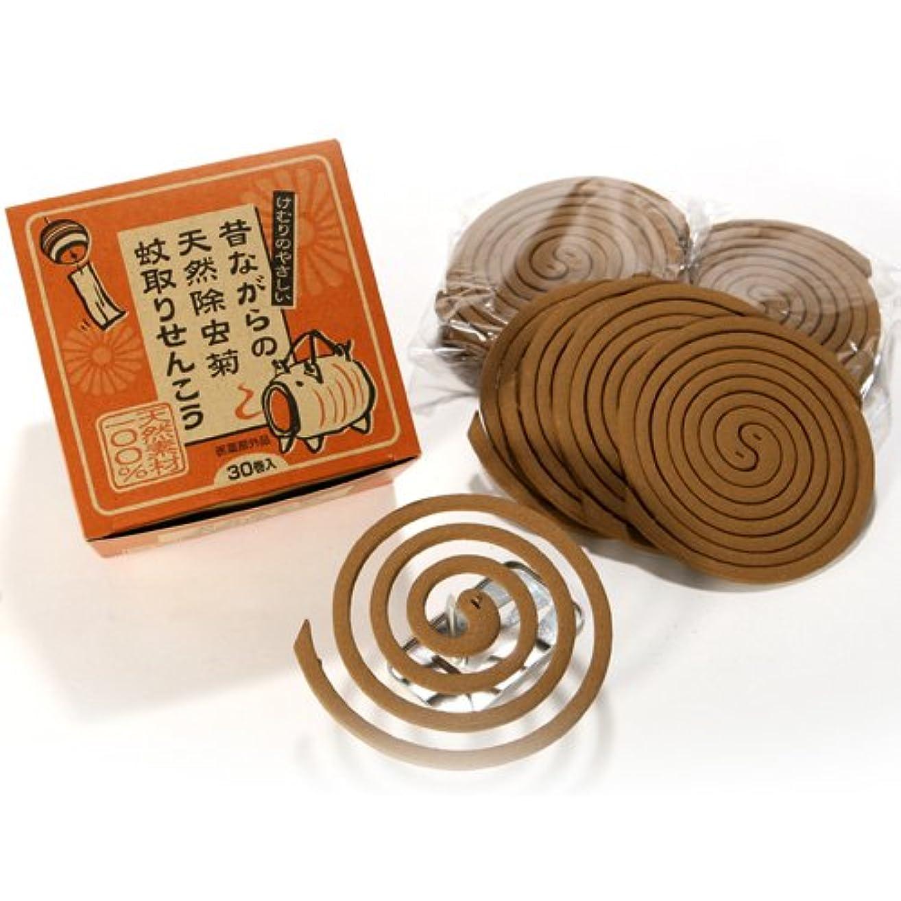 ロマンチック石鹸大きい昔ながらの天然除虫菊 蚊取線香 30巻