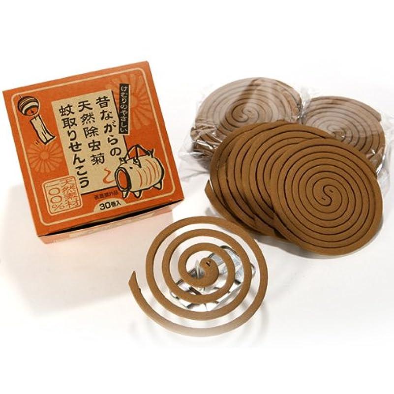 デッキ賞使役昔ながらの天然除虫菊 蚊取線香 30巻