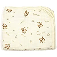 Bambino Land Double Layer Swaddling Blanket Night Owl