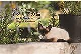 カレンダー2016(卓上) イタリアの猫 両面リバーシブル仕様(裏表別の写真 計24枚の写真) 16×18cm 12枚は壁掛と同じ写真を使用