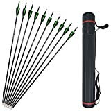 12 Pcs 30 Inch Archery Carbon Arrows Spine 500 Practice Hunting Arrows Removable Field Points Fletched Plastics Vanes with Arrow Quiver Tube