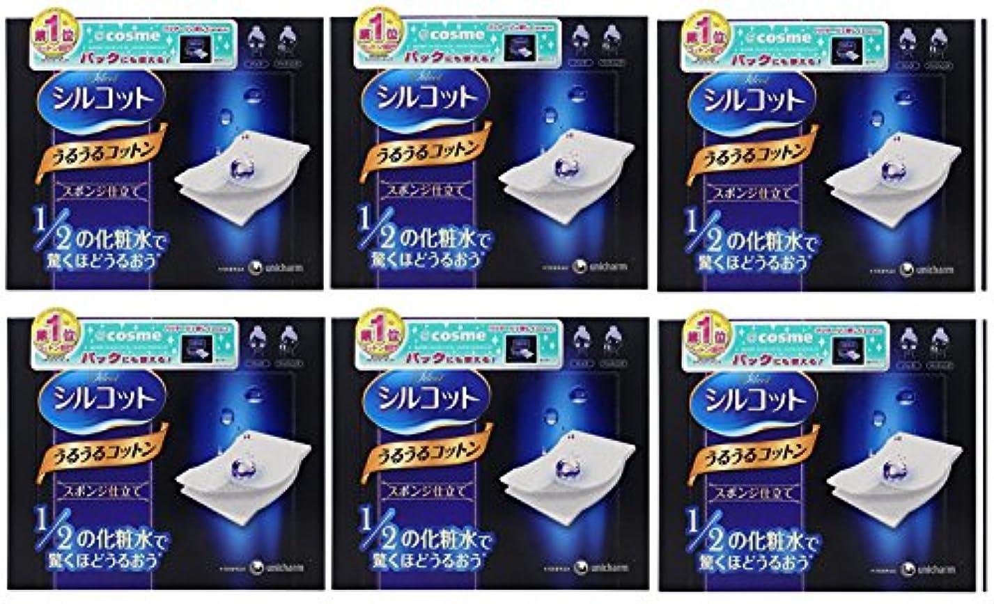 同意幻想豊かにする【セット品】シルコット うるうるスポンジ仕立て(40枚入)x6
