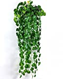 【SCGEHA】フェイクグリーン インテリア イミテーション 人工 観葉植物 壁掛け 緑 癒し 3種類 (Cタイプ/2本)