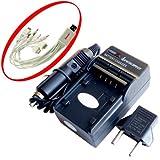 iTEKIRO AC壁DCカーバッテリー充電器キットfor Sony dcr-trvシリーズdcr-tv900dcr-tv900e dcr-vx1000dcr-vx1000e + iTEKIRO 10-in-1USB充電ケーブル