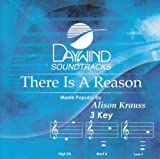 There Is A Reason [Accompaniment/Performance Track] by Made Popular By: Alison Krauss (2008-05-01) 【並行輸入品】