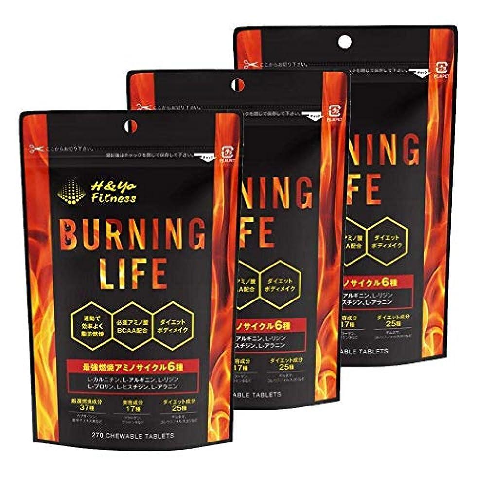 報酬の一握りを通してBURNING LIFE 燃焼系ダイエットサプリ L-カルニチン 必須アミノ酸BCAA配合 運動時の燃焼を強力サポート 270粒 (3か月分)