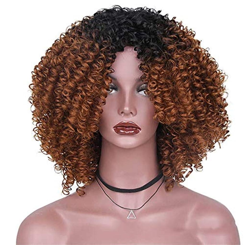 雪のナチュラルボルトWASAIO アフリカの黒人女性のグラデーションカラー爆発ヘッドふわふわ小波髪ウィッグアクセサリースタイル交換繊維合成14インチ (色 : C-1)