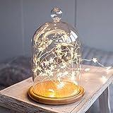 INS LEDイルミネーションライト 30球3m 銅線ワイヤー星型装飾 ライト キラキラロマンチック スター 結婚式/ クリスマス/ 店舗装飾 / お庭など対応