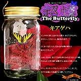 超蝶 キアゲハ