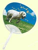 名入れうちわ【犬】No.114 犬柄 W240xH345mm ※ご注文は100本以上から