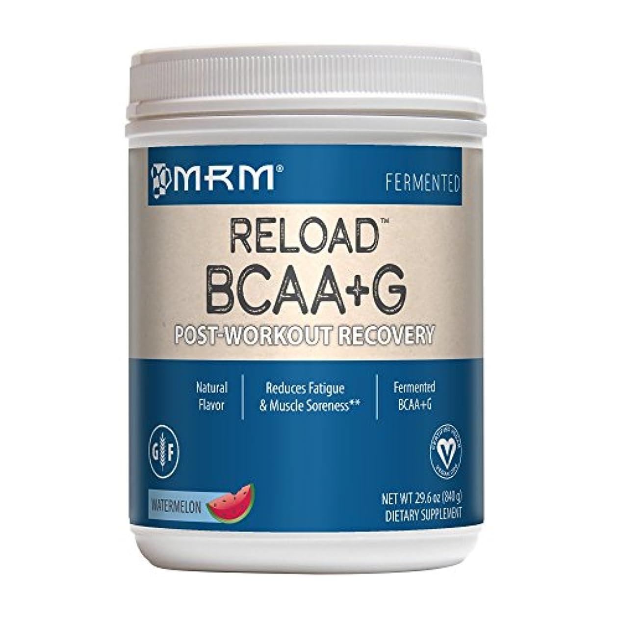 リロード(BCAA+G) (スイカ 840 g)