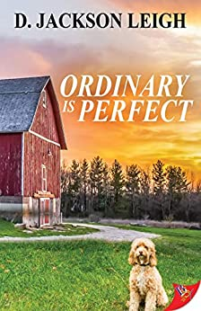 Ordinary is Perfect by [Leigh, D. Jackson]