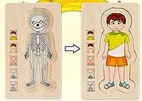 Chusea 興味深い子供のおもちゃ 創造的な木製教育パズル 早期学習数字 おもちゃ 子供への素晴らしいギフト