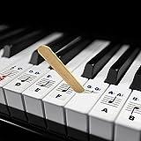 KALARU ステッカー ピアノ鍵盤 音符 シール 初心者 81鍵盤通用 54/61/76/88通用