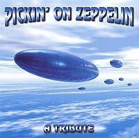 Pickin on Zeppelin: Tribute