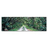 Going Home by Doug Cavanah、6x 19インチキャンバス壁アート