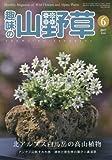 趣味の山野草 2017年 06 月号 [雑誌] 画像
