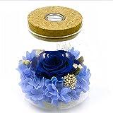 Jingfud 手作りの永遠の花の led ライトを希望ボトル永遠の命の花バレンタインデーの母の日記念日の誕生日の結婚式のギフト
