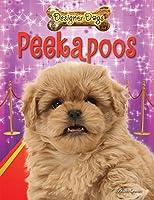 Peekapoos (Designer Dogs)