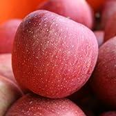 ふじ Aランク (贈答用) 約5kg 10玉~18玉 長野県産りんご 『糖度12度以上』 光センサー選果