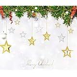 クリスマス飾り 新年 happy new year 冬 winter 星型 オーナメント グッズ CHRISTMAS X'mas 飾り 装飾 幸せを運ぶ スター クリスマス パーティー ウォールデコ 壁掛け 吊るし飾り14枚 (ゴールド+シルバー)