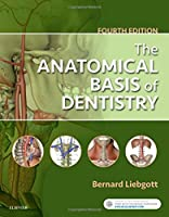 The Anatomical Basis of Dentistry, 4e
