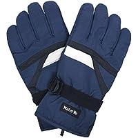 スキーグローブ メンズ スキー 手袋 大人用 スノーグローブ W2510-15