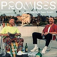 Promises [12 inch Analog]