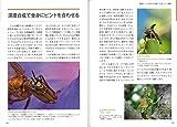 海野和男の昆虫撮影テクニック 増補改訂版 画像