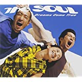 """GREATEST HITS""""THE SOUL"""""""
