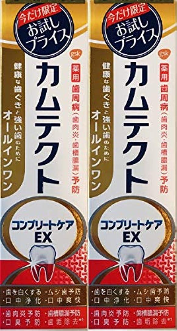 達成遅れマルクス主義者【まとめ買い2個】カムテクトコンプリートケアEX